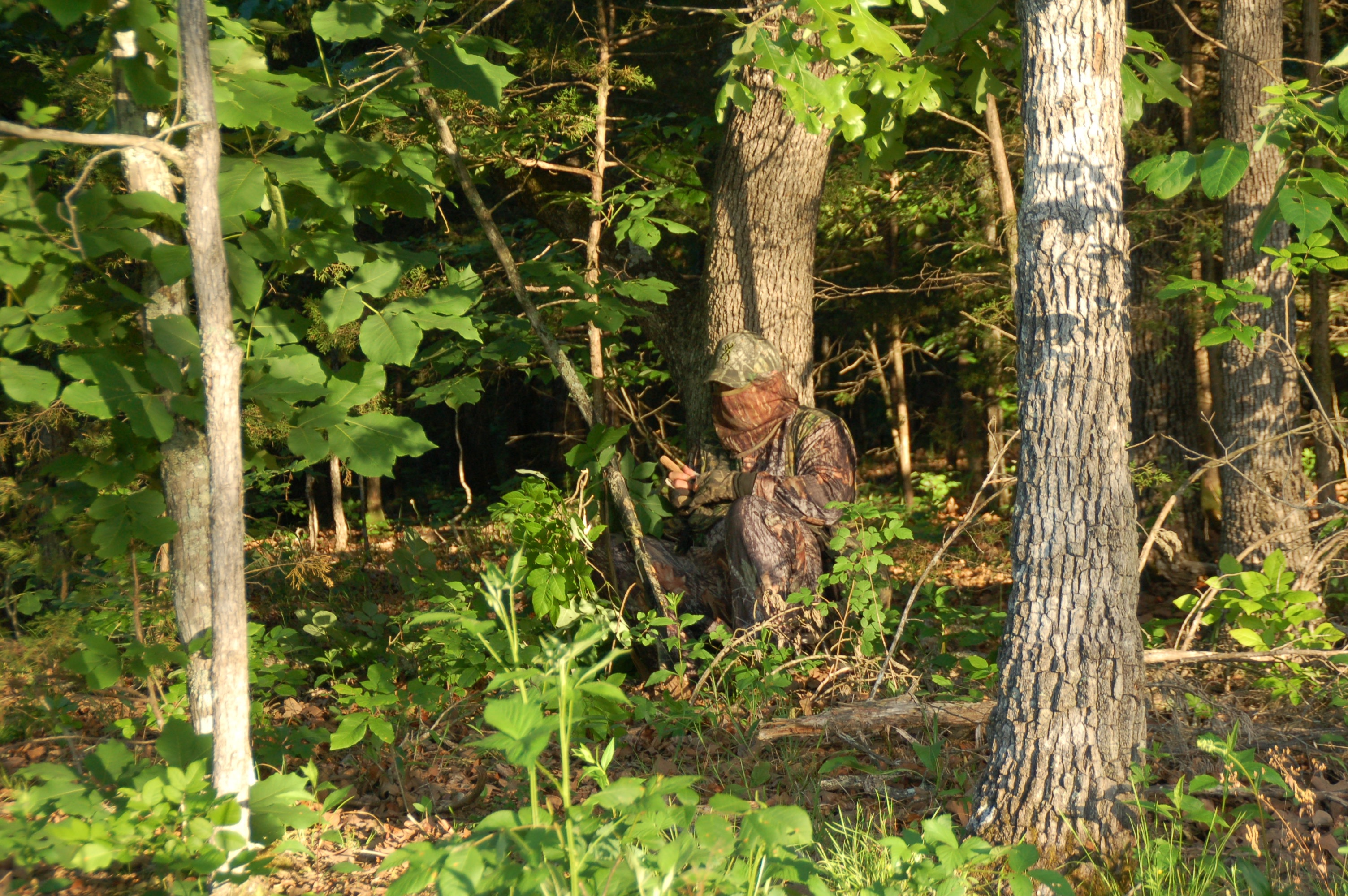 A turkey hunter hides in the underbrush working a call to lure in a gobbler.